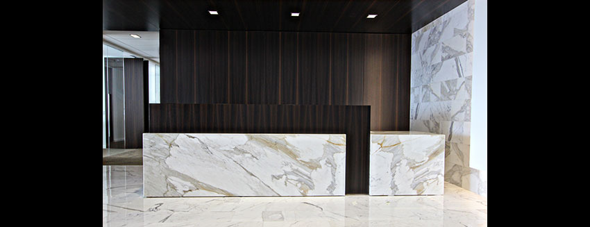 Reception Architectural Millwork